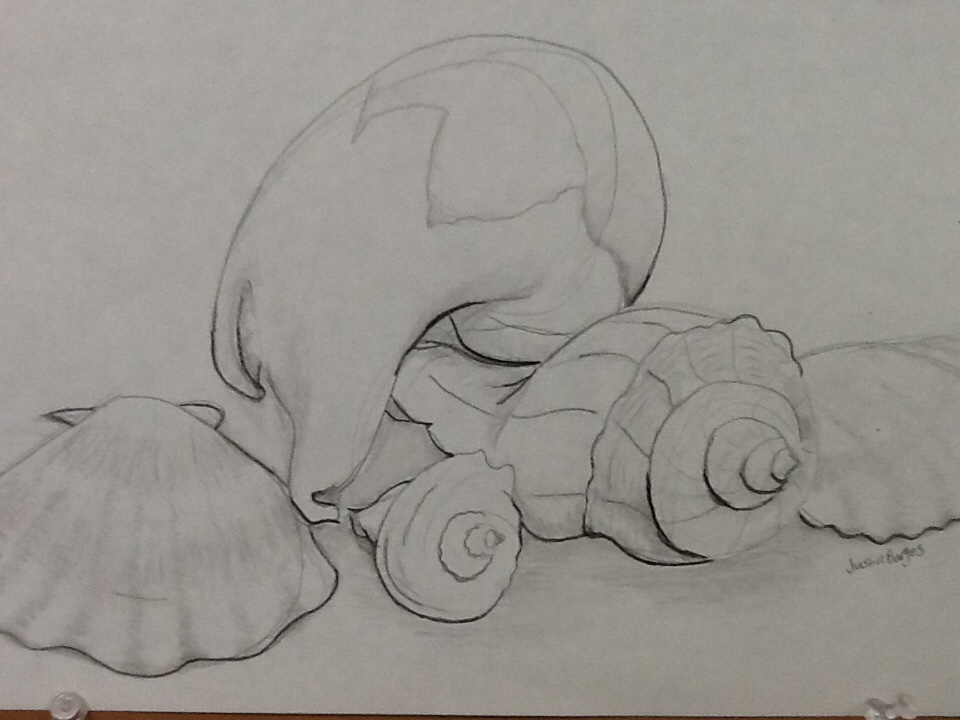 Line Drawing Vs Value Drawing : Art ii contour line drawing fairhaven high school